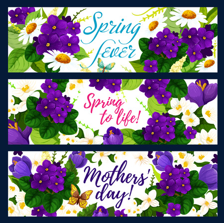 Spring flower with butterfly greeting banner set for Springtime Season and Mother Day holiday design. Chamomile blossom, crocus, violet and blooming branch of jasmine with green leaf festive card