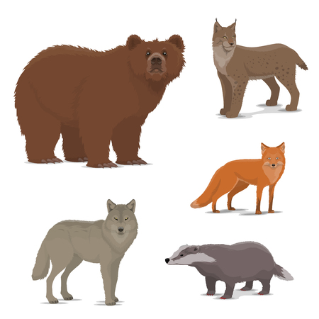 Wild animals vector icons. Bear and lynx, fox and badger, wolf. Bobcat or wildcat and brown bear, predator and brock. Forests mammals isolated. Zoo or hunting sport theme vector
