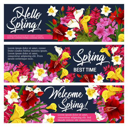 Spring flower greeting banner for Springtime holiday celebration design. Blooming garden plant poster of daffodil, tulip and calla lily, iris, azalea and freesia with yellow, red and white blossom Ilustracja