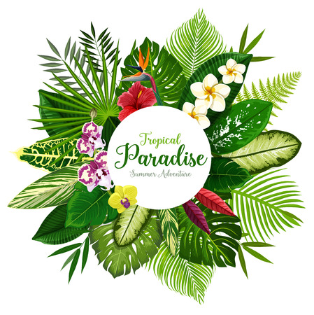 Summer holidays banner of tropical palm leaf and hawaiian flower. Exotic floral bouquet of hibiscus, plumeria, orchid and strelitzia flower, fern, monstera, fan and areca palm for invitation design Foto de archivo - 109734885