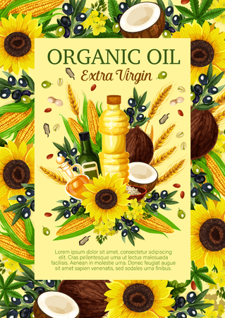 Organic oil vector. Olive branch, sunflower and corn, coconut, flax seed and colza, peanut, hemp natural food product with flowers and leaves vector. Bottles and ingredients of extra virgin oil