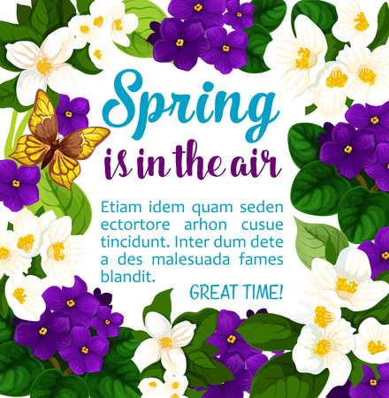 Spring time poster of crocuses flowers for wish card or seasonal holiday greeting design. Vector Spring is in Air quote of springtime blooming garden violas and butterflies on flourish blossoms bunch Ilustrace