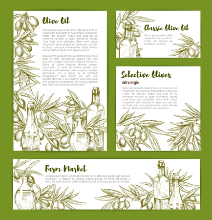 Olive oil and selective olives sketch vector poster templates with bottles and pitchers for product nutrition information, vegetarian food salad flavoring ingredient or vegetable seasoning Ilustracja