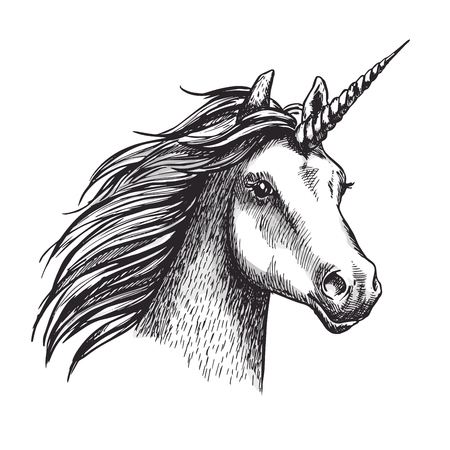 Unicorn sketch icon. Vector magic or mystic fairy horse horn and waving mane. Wild fantastic unicorn stallion symbol for equine sport or equestrian races contest exhibition Stock Illustratie
