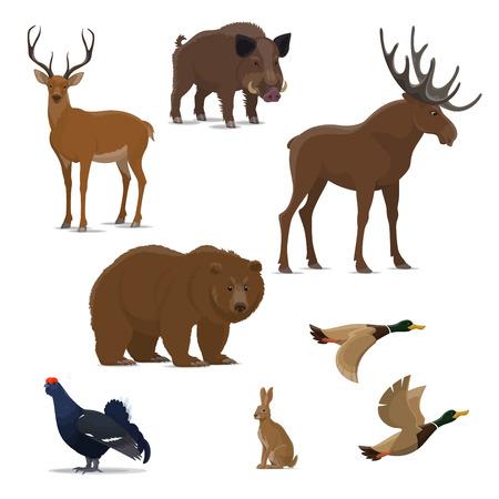 Animales del bosque salvaje y conjunto de iconos aislados de aves para el diseño deportivo de caza Oso, pato y ciervo, reno, liebre y alce, jabalí y urogallo símbolo de carnívoro, mamífero herbívoro y ave de caza