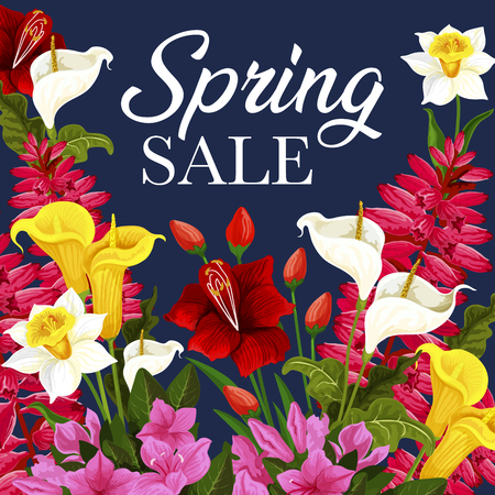 Spring sale discount offer poster with flower frame. Daffodil, calla lily and tulip, azalea, delphinium and freesia blossom floral banner with springtime season bouquet of blooming garden plant