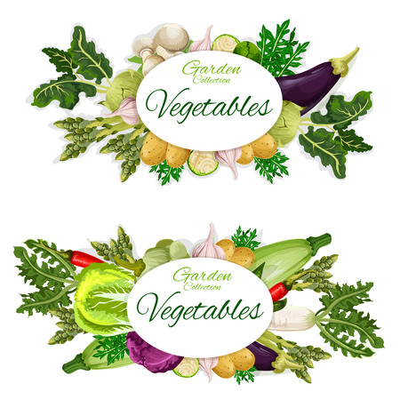 Vegetables harvest, natural food vector. Mushroom, eggplant, potato and garlic, chili pepper and lettuce, cabbage and zucchini, radish and rosemary. Garden or farm agricultural groceries 일러스트