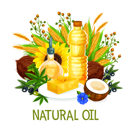Natural oil in bottles, vector. Butter on plate, coconut and corn, sunflower, olives, herbs and wheat spikes, hemp and flowers. Extra virgin oils, organic product for cooking and seasoning Ilustracja