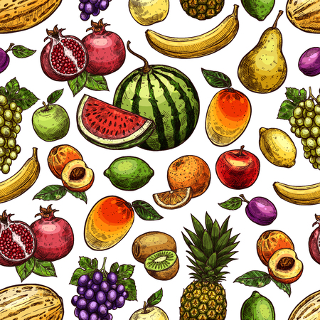 Vruchten schets naadloze patroon. Vector achtergrond van exotische ananas, banaan of kiwi en druif, tropische mango of pruimen en peer of appeloogst en boerderij granaatappel of abrikoos met watermeloen