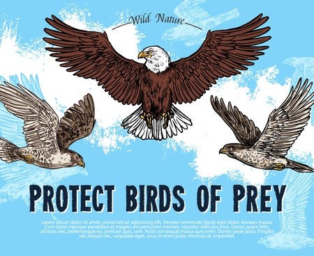 Protect birds of prey sketch poster for wild nature and environment protection. Vector design for save rarity predatory or raptor birds of eagle vulture, falcon or hawk flying in sky Stock Illustratie