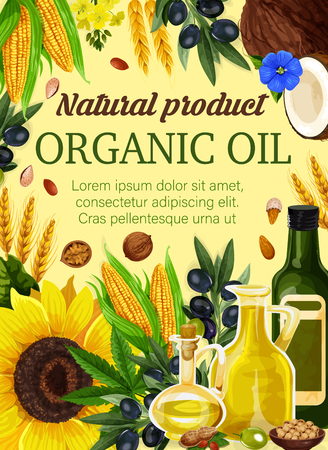 Natural cooking oil from plant seeds and nuts for vegetable nutrition. Vector cooking oil and butter from coconut, peanut or hazelnut, extra virgin olive and sunflower with flax and corn Stock Illustratie