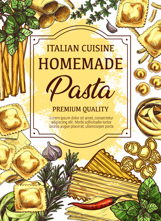 Italian cuisine sketch poster of homemade pasta, olive oil and herbs or spice seasonings. Vector design of spaghetti, penne or lasagna and ravioli pasta with garlic, basil or rosemary and chili pepper