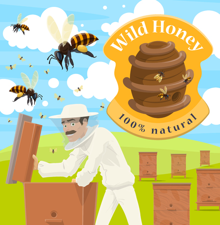 Beekeeper at apiary taking natural honey poster for beekeeping. Man in white protective outfit with wooden honeycomb or at beehive with bees flying around on farm or ranch, wild hive and sign vector Ilustração