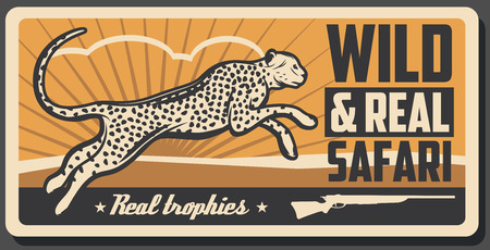Hunting club retro poster, cheetah panther as a hunter trophy and Safari open season. Vector wild animal cheetah or leopard Illustration