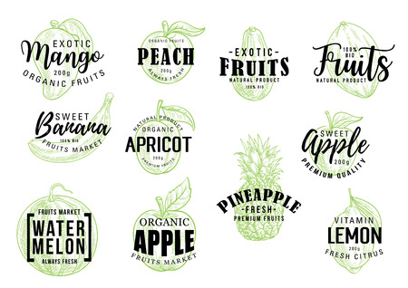 Iscrizione di schizzo di frutti tropicali esotici. Calligrafia vettoriale di mango, pesca o banana e albicocca, mela biologica con ananas, anguria e agrumi limone