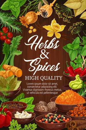 Organic spices and herbal seasonings in bowls, cooking design. Vector vanilla, poppy seeds and red chili pepper, ginger root or celery and wasabi with basil or dill and parsley Ilustracja