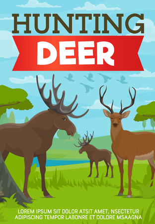 Hunting deer and moose poster with forest animals. Chasing and killing wild species for sport out on nature, outdoor activity, grass and lake. Hunt as brutal hobby or pastime brochure vector