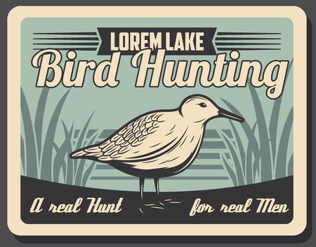 Stagione di caccia aperta per uccelli selvatici, poster retrò della società di cacciatori o club di caccia. Vector foresta beccaccia eurasiatica, avventura di caccia agli uccelli