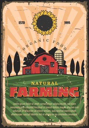 Farming and agriculture retro vector vintage design. Farmland with wheat or rye grain, barn and tree fields, sunflower. Organic and natural food production