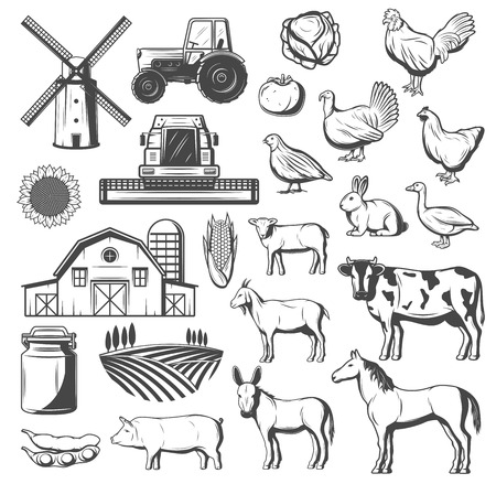 Farming, agriculture and cattle icons. Vector tractor, windmill or grain barn and arable field, farm animals cow and horse, pig and chicken, turkey, duck and goose, tomato and potato veggies Illustration