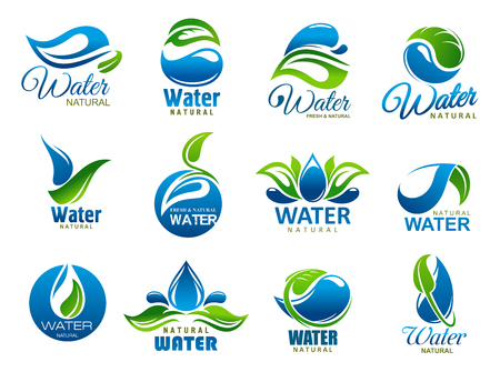 Salpicaduras o gotas de agua y los iconos de hojas verdes de agua potable natural o mineral. Vector de gotas de agua azul y símbolos de plantas de la naturaleza. Entorno, envase de botella o tema de identidad de la empresa.