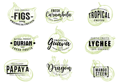 Exotic fruits sketch lettering, farm market and organic healthy food. Vector calligraphy with fig, carambola starfruit, durian and guava, lychee, papaya and dragon fruit pitaya, durian and mangosteen Illustration