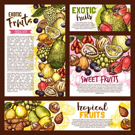 Exotic tropical fruits sketch, farm market. Vector tasty salak, jujube, sapodilla and ackee apple, ambarella or tamarind and jabuticaba, pepino fruit and jackfruit, kumquat Ilustracja