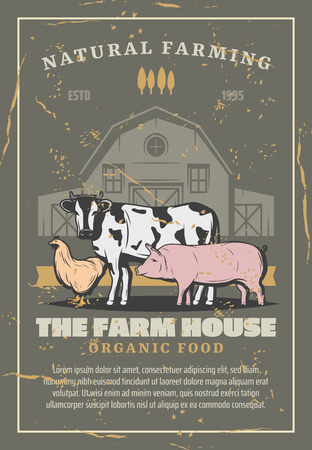 Farm animals and birds. Vector domestic pig, cow and chicken with old barn behind. Agriculture and livestock, species producing milk, meat and eggs, natural farming and organic food