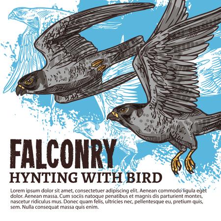 Sport di caccia alla falconeria, schizzo con uccelli falchi selvatici. Specie predatore con ali larghe, becchi e artigli affilati. Falco con piumaggio grigio che vola nel cielo. Illustrazione vettoriale Vettoriali
