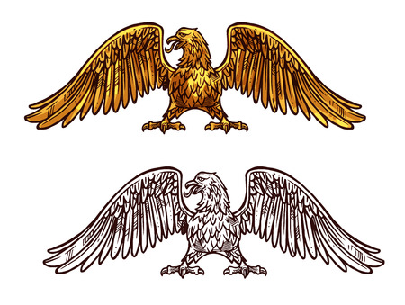 Eagle heraldic icon, sketch medieval style. Griffin with broad wings and sharp claws. Vector mythical or legendary bird with golden plumage, honorable hawk Vettoriali