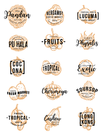 Exotic tropical fruits sketch lettering. Vector calligraphy of bergamot, pandan or pandanus and lucuma, farm pu hala fruit, physalis or cocona and organic cherimoya with soursop and cashew apple
