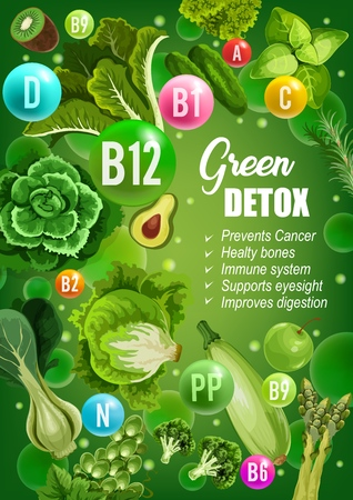 Green diet for detox, immune system or bones support and cancer prevention. Vector color diet nutrition of green vegetables, salads or fruits with vitamins and minerals for healthy digestion