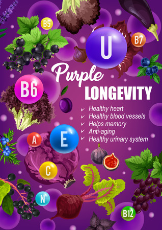 Purple diet for longevity, healthy heart or blood vessels and anti-aging or urinary health. Vector color diet nutrition of purple vegetables, salads, fruits and berries with vitamins and minerals