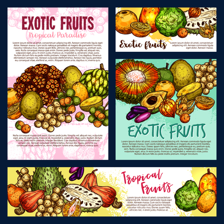 Exotic tropical fruits, farm market design. Vector tangerine citrus, pandan or pandanus, physalis with longkong or soursop, bergamot and cashew, jambolan, naranjilla or jambolan and bergamot fruit
