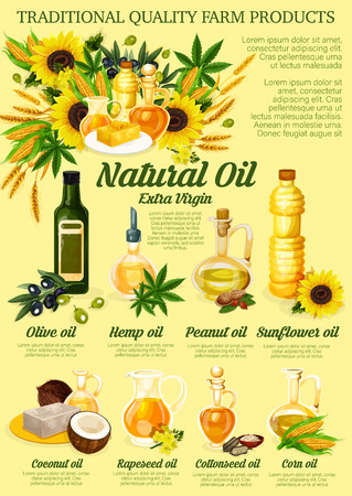 Natural cooking oil, organic farm products. Vector oil bottles of olive, hemp or peanut and sunflowers seeds, coconut or rapeseed and cottonseed flax Çizim