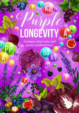 Color diet healthy food, purple fruits and vegetables. Healthy nutrition vitamin ingredients for longevity and health. Vector cabbage, onion and grapes, eggplant, blackberry and blueberry Illustration