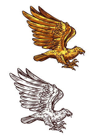 Eagle, falcon, hawk or phoenix sketch of golden bird flying with raised wings. Falconry hunting emblem, vintage royal heraldry element or tattoo vector design
