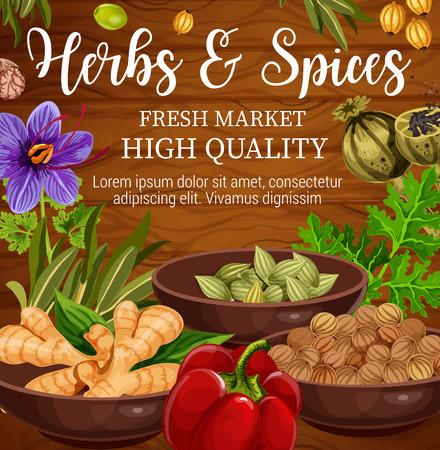 Herbes, épices et légumes, assaisonnements alimentaires et condiments sur fond en bois. Persil vectoriel, racine de poivre et de gingembre, origan, fleur de safran et basilic, cardamome, noix de muscade et graines de coriandre
