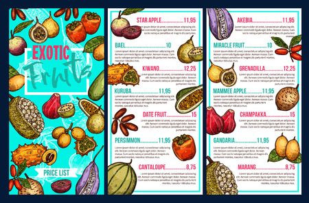 Exotic fruits price menu for farm market. Vector sketch design for star apple, bael or kiwano and kuruba with date fruit and persimmon or cantaloupe, tropical akeiba or grenadilla and champakka