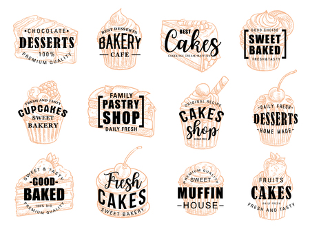 Pastry desserts and sweet cakes sketch lettering for patisserie or cafeteria and bakery cafe. Vector calligraphy for chocolate cupcake, tiramisu or muffin and cheesecake for pastry shop Çizim