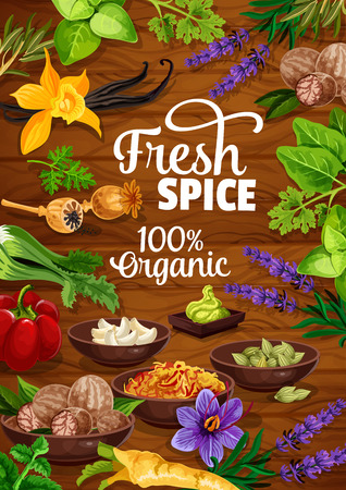 Spices and herbs or organic seasonings poster. Vector design of wasabi, garlic or nutmeg and poppy seed, vanilla with lavender, horseradish and pepper or spinach and parsley on wooden background