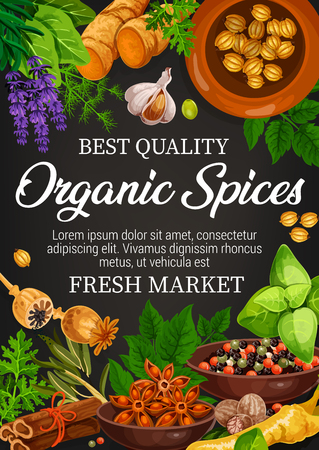 Organic spices, farm market store of seasonings. Vector lavender and ginger, garlic and poppy, basil and pepper mix, mint and cinnamon. Condiments and flavorings for cooking Illustration