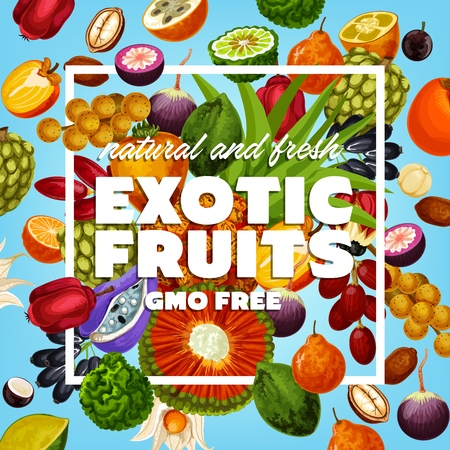 Exotic fruit, healthy food, GMO free products. Vector soursop and sugar apple, noni and marang, Buddhas hand and tangelo. Longkong and quince, peppino and persimmon, akebia and pandanus, jabuticaba