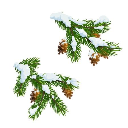 Weihnachtstannen- und Kiefernbaumzweige bedeckt mit Schnee. Frohe Weihnachten und ein glückliches neues Jahr vektor Weihnachtsbaumdekoration mit Zapfen und Schneeflocken