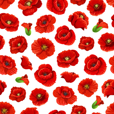 Poppy flowers pattern background. Vector seamless red floral ornament with blooming poppies buds and leaves, wedding or love romance decoration. Illustration