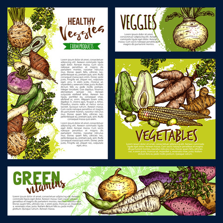 Vegetables and veggies sketch banners. Vector farmer agriculture food potato, radish or turnip and beans, natural jicama and organic cassava manioc with beetroot