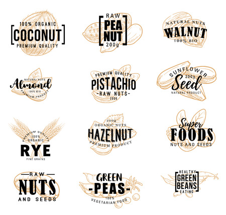 Nuts and fruit seeds sketch lettering. Vector farm market and dessert calligraphy, peanut or pistachio and almond, coconut nut and hazelnut or walnut and green peas healthy raw food
