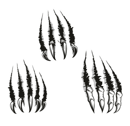 Scratch claws of animals, vector . Hole in sheet of paper with torn edges, monster claws scratching wall. Beast claw breaking through ripping and tearing, monochrome Illustration