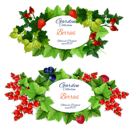 Healthy garden fruits and berries vector banners. Strawberry and raspberry, blueberry and red currant, gooseberry and briar. Green leafy branches with oval badge, natural organic food