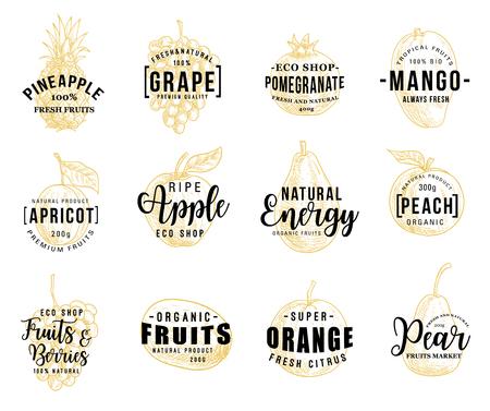 Früchte und Beeren Silhouetten Skizzen mit Schriftzug, Vektor. Ananas und Traube, Granatapfel und Mango, Aprikose und Apfel, Pfirsich und Orange, Kiwi oder Birne. Natürlicher vegetarischer Lebensmittelvektor Vektorgrafik